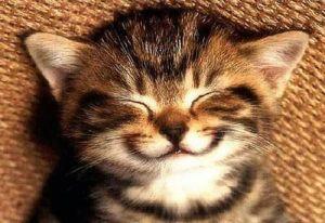 Smile._new