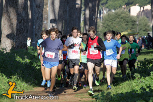 corri-per-il-verde-2015-pineto-300x200