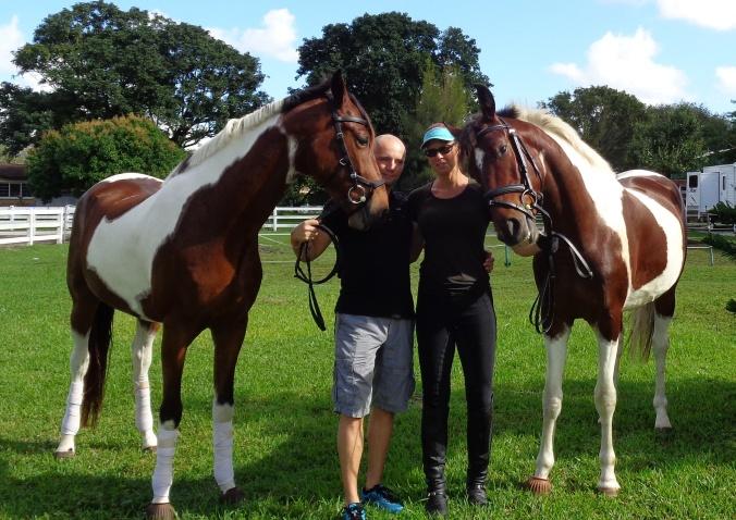 Horses (2).jpg
